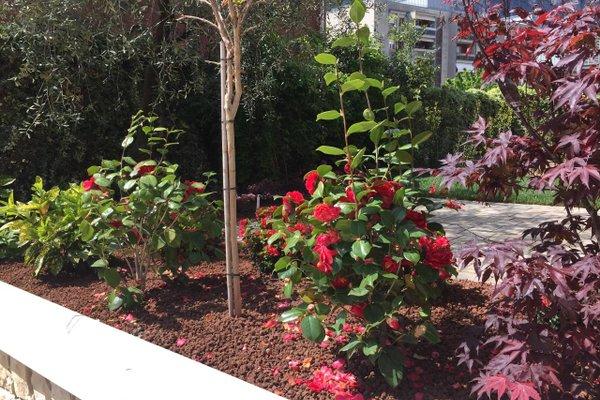 Casa Ducati - фото 12