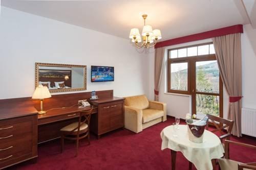Hotel Buczynski****Medical&SPA - фото 5