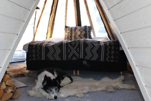 Holmen Husky Lodge - фото 9