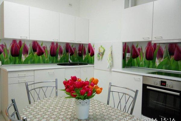Apartment Malina (Shevchenko) - фото 19
