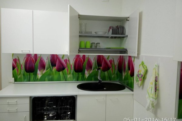 Apartment Malina (Shevchenko) - фото 20