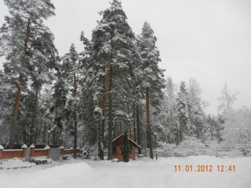 Guest House Danaya - фото 3
