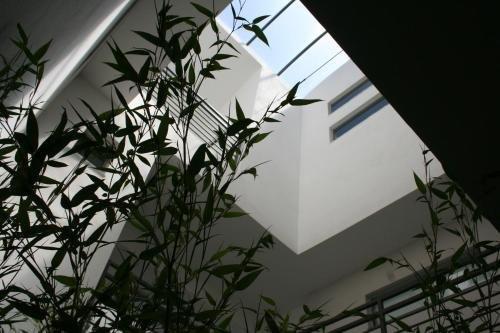 Levante Residence - фото 15