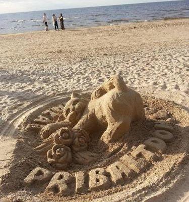 PribaltDom - фото 6