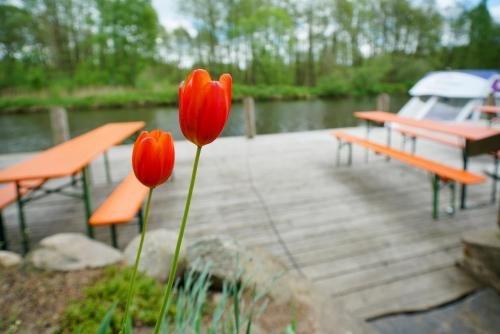 Cafe & Pension Am Brunnen - фото 17