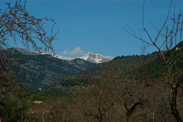 Holiday home S.Fuster,Sector2,Parc - фото 18