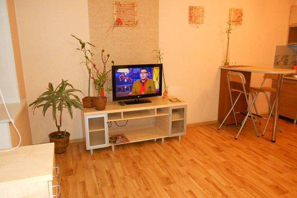 Apartments Na Pavlovskom Trakte - фото 21