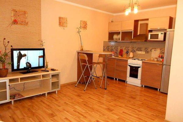 Apartments Na Pavlovskom Trakte - фото 23