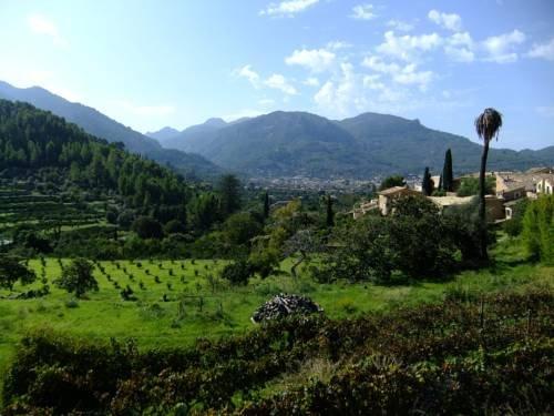 Villa Bon Jardi - фото 7