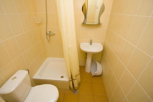 Guest House Vinogradnaya 4 - фото 13