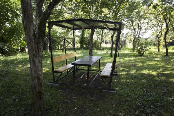Kobuleti Garden Inn - фото 19
