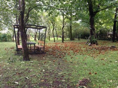 Kobuleti Garden Inn - фото 21