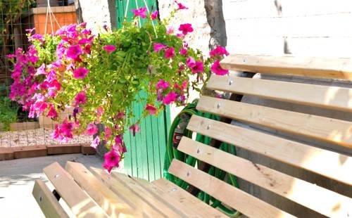 Casa Bella - фото 19