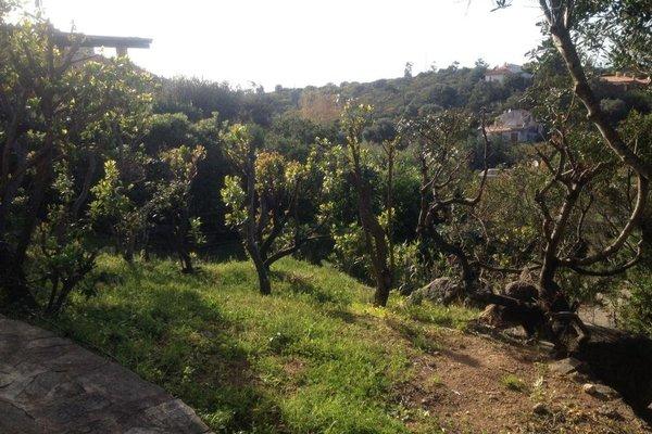 Villa Dorata - фото 15