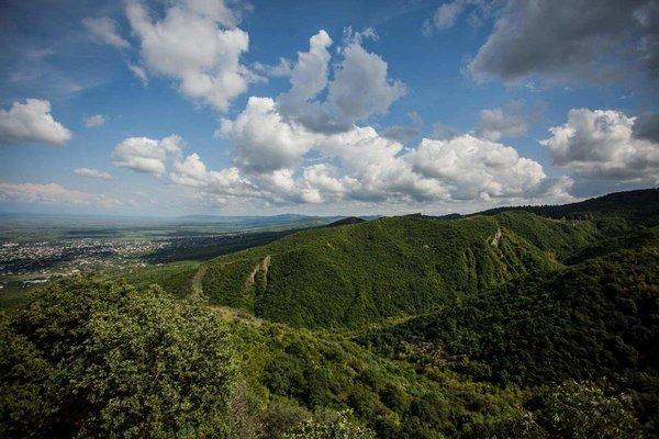 Panorama - фото 5