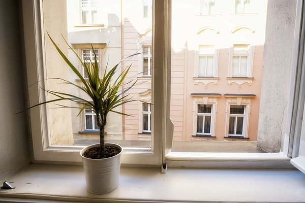 Apartment by the Old Town Square - фото 9