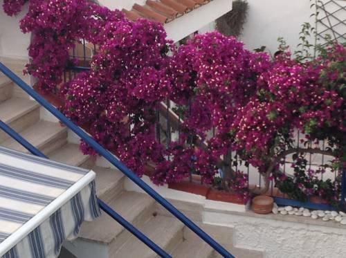 Villa Solemar - фото 12