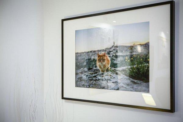 Dimora al Mulino - фото 4