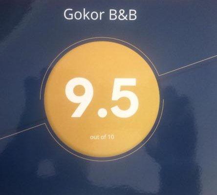 Gokor B&B - фото 2