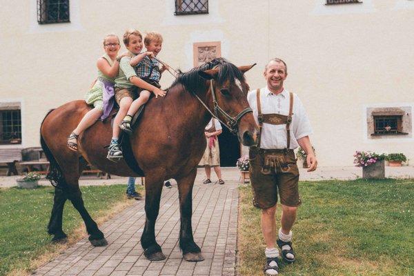 Saalhof Castle - фото 20