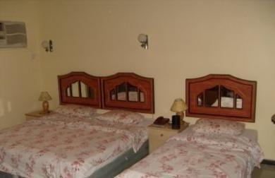 DEIRA PARK HOTEL - фото 2
