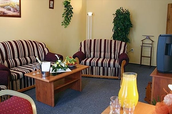 Grand Hotel Cerny Orel - фото 11