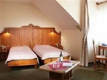 Hotel U Veze - фото 1