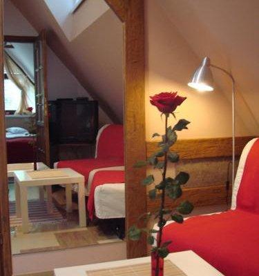 Apartamenty Centrum Zakopane - фото 10
