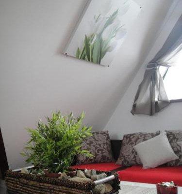 Apartamenty Centrum Zakopane - фото 8