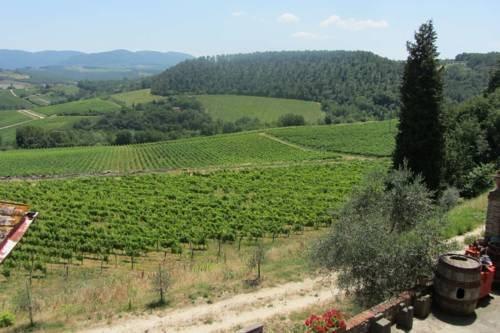 Winery Houses in Chianti - фото 20