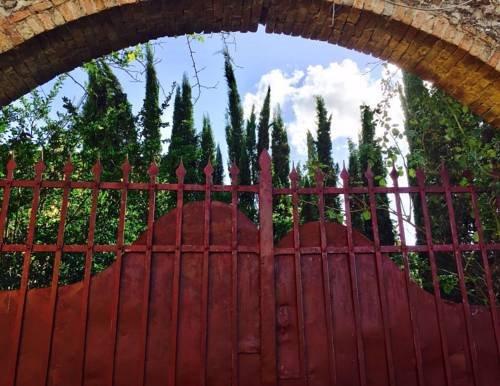 Winery Houses in Chianti - фото 22
