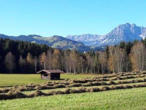 Filzenhof - фото 10