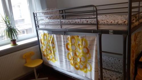 Lemon Tree Hostel - фото 3