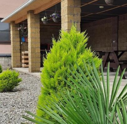 Anzor Guest House - фото 16