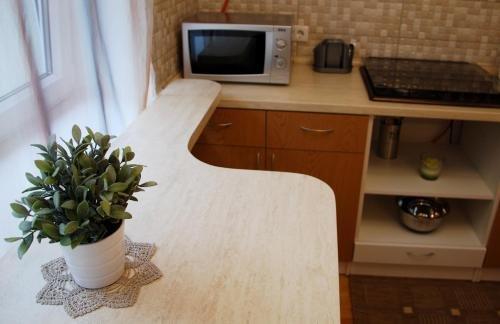 Tulpes apartamentai - фото 12