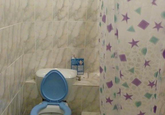 Guest House Rozoviy Sad - фото 11