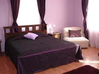 Vidin Hotel - фото 6