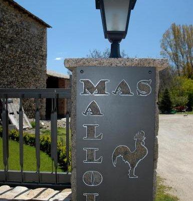 Mas Mallol - фото 18