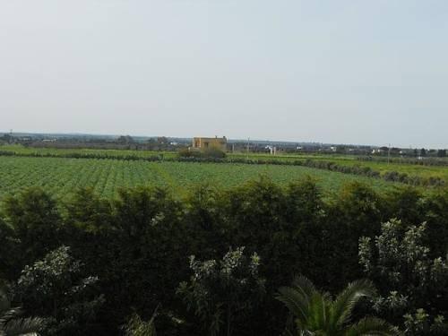 Villa Al Mare - фото 5