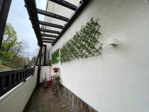 Apartment Santoriny Club - фото 6