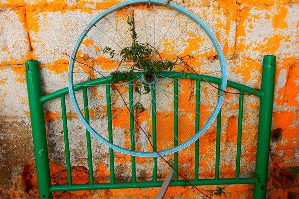 Street Garden Hostel - фото 19