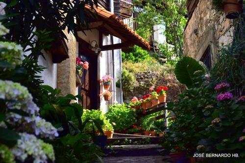 Casa Rural Amparo - фото 17
