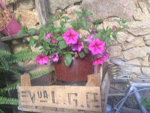 Casa Rural Amparo - фото 14