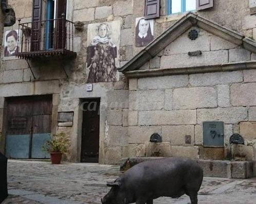 Casa Rural Amparo - фото 3