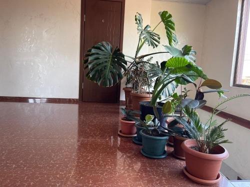 Guest House Grigoletinskaya - фото 2