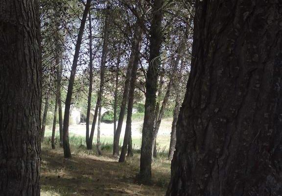 Al Lago - фото 5