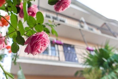 Hotel Sofiya - фото 14