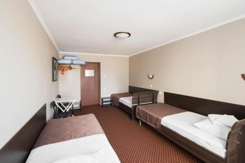 Magnolia Sochi Hostel - фото 4