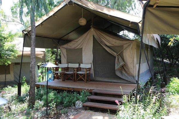 Wildebeest Eco Camp - фото 20