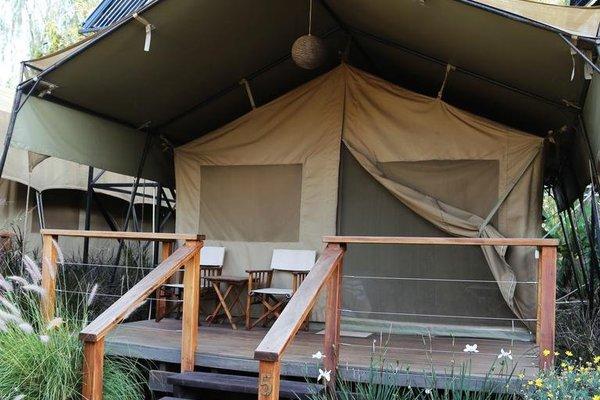 Wildebeest Eco Camp - фото 22